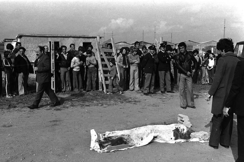 Il corpo di Pasolini ritrovato a Ostia.